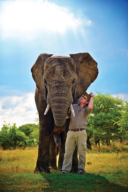 Sean Hensman, Director, Elephants For Africa Forever (EFAF) and Managing Director at AWE.